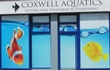 Coxwell Aquatics Monster Aquarium